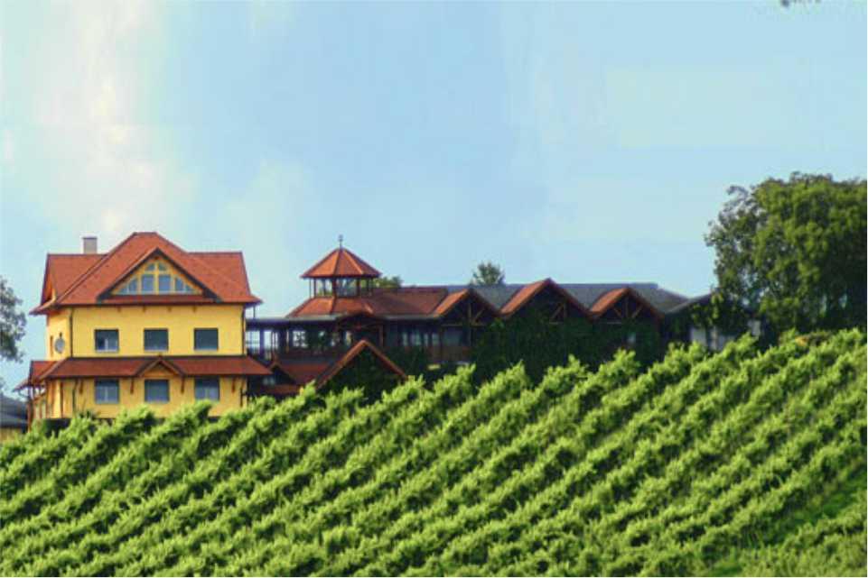 Weinbau Buschenschank Burger Gastgeber am Feistriztalradweg R8